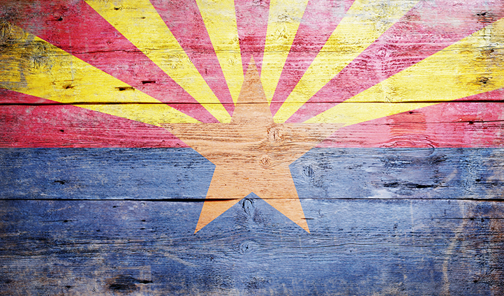 Harris v Arizona Independent Redistricting Commission